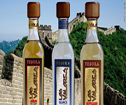 tequilla in china