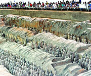 terracotta warrior museum